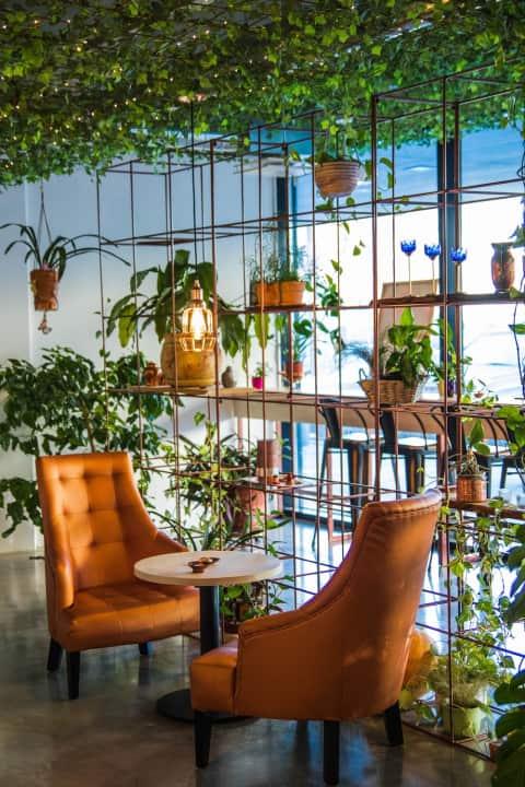 Restaurant Cafe Sluiting Huurkorting Horeca Corona advocaat
