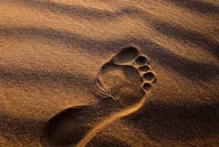 Erven en nalaten, voetafdruk